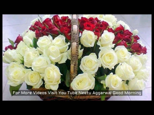 Good Morning Flowers For You,Good Morning Wishes,Greetings,Sms,Sayings,Quotes,E-card,Whatsapp video