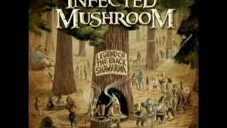 Infected Mushroom _Sa'eed (Radio Edit) + Lyrics//2009 New Song