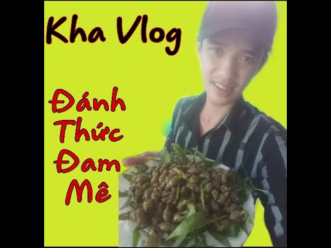 Ốc Cà Na Xào Bơ Tỏi ! Videos Đầu Tiên Thử Thách Làm Vlog.