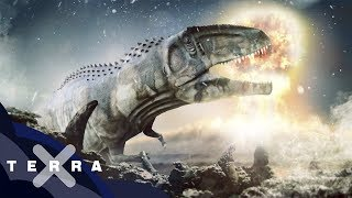 Woran genau starben die Dinos? | Neue Theorie