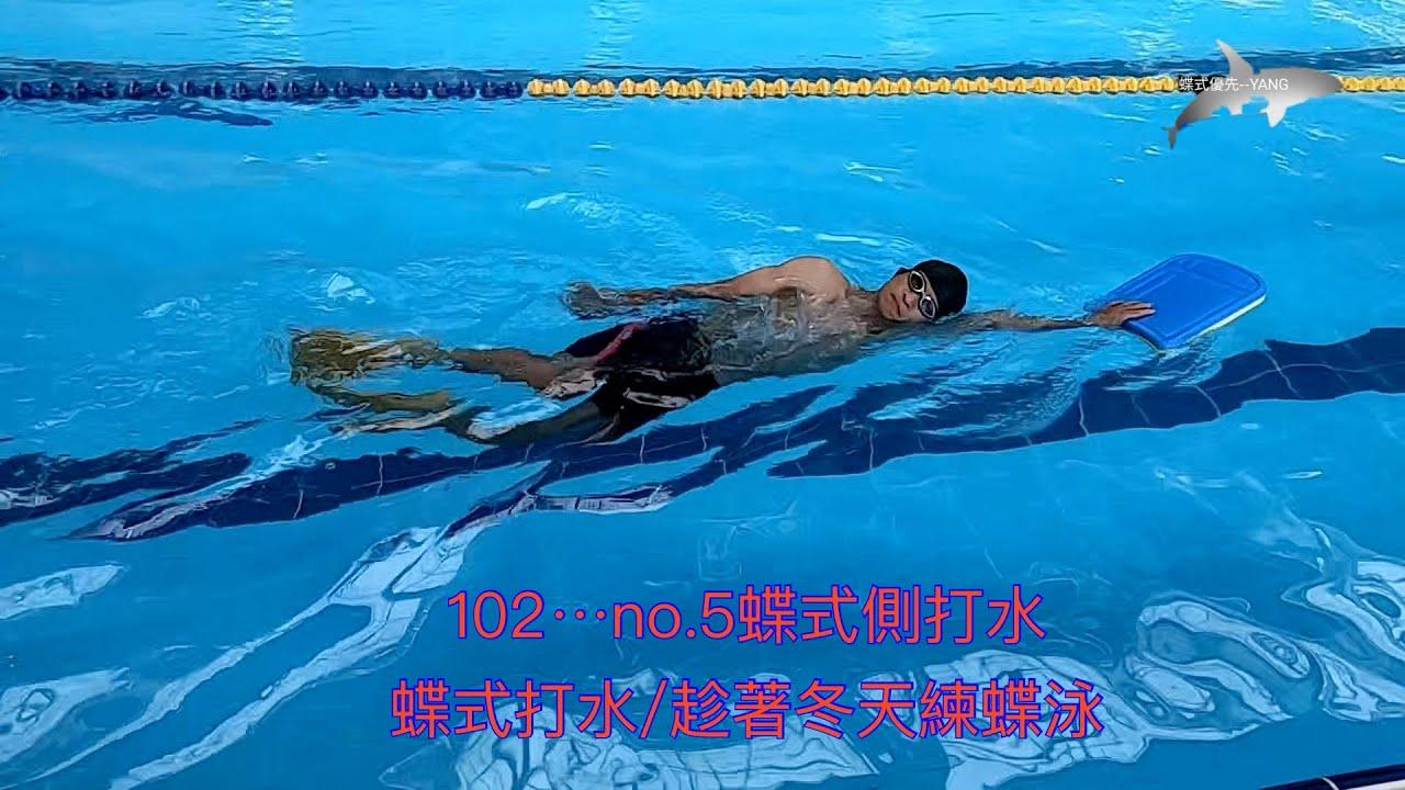 102.---5.蝶式側打水/蝶式打水/趁著冬天練蝶泳