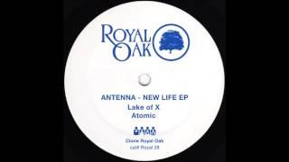Antenna - New Life