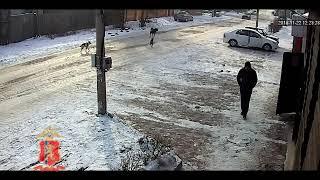 оперативное видео по розыску подозреваемого в совершении преступления