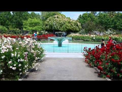 San Jose Municipal Rose Garden San Jose Youtube