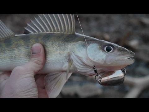 Fishing at the Ohio River! Vlog#12