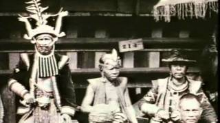 Mother Dao (parte 1 de 7)