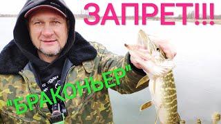 Рыбалка в ЗАПРЕТ Спиннинг с берега