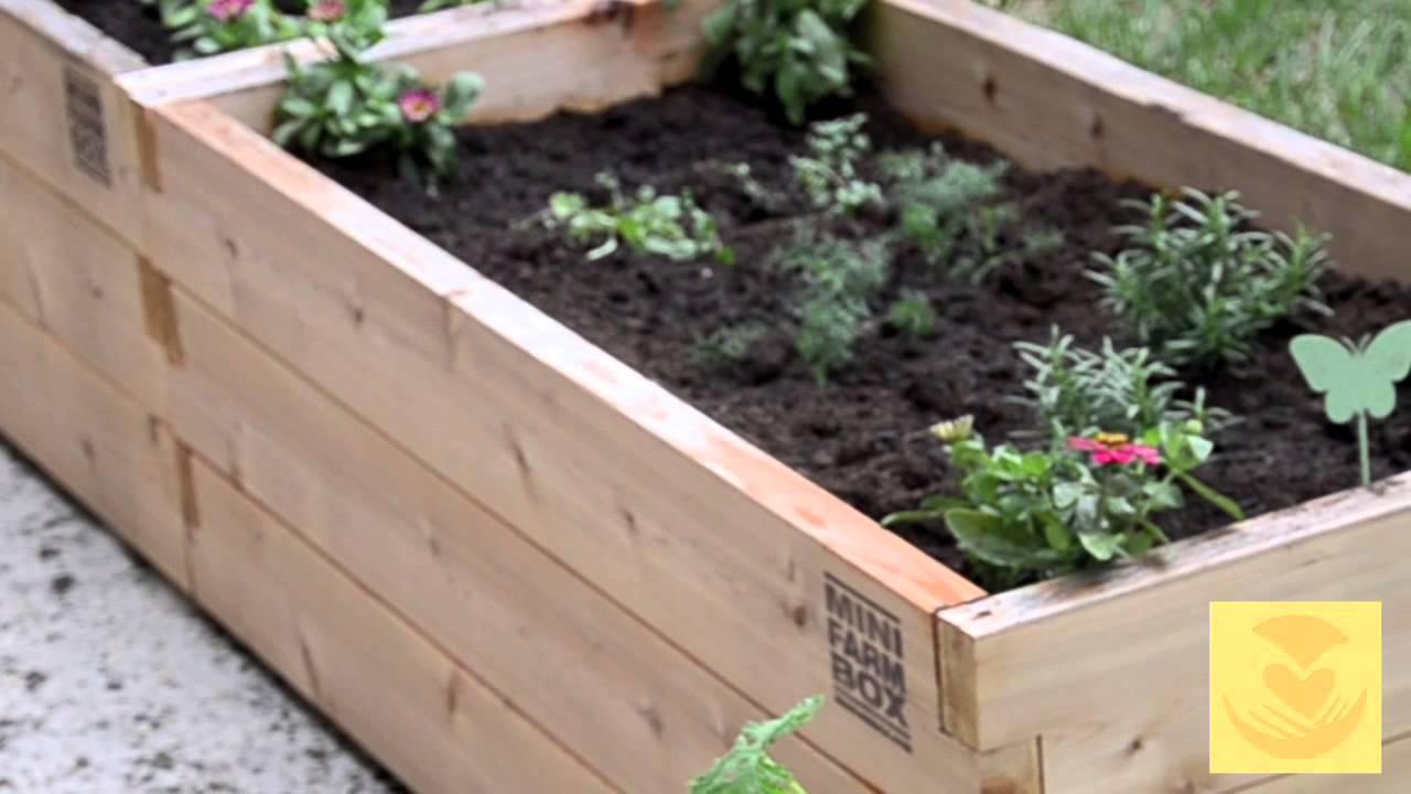 box garden. Mini Farm Box Garden Container From EarthEasy.com