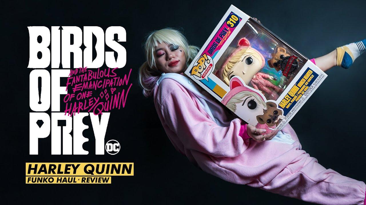 Birds Of Prey Harley Quinn Funko Pop Haul Youtube