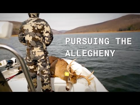 Deer Hunting The Allegheny National Forest Film - PA, Public Land
