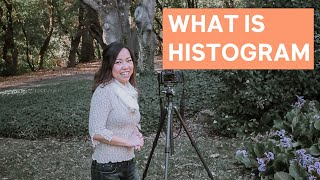 Why You Should Use Histogram On Your Camera