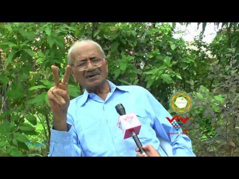 SUCCESSFUL CULTIVATION OF SANDALWOOD BY SHANTUBHAI - VTV