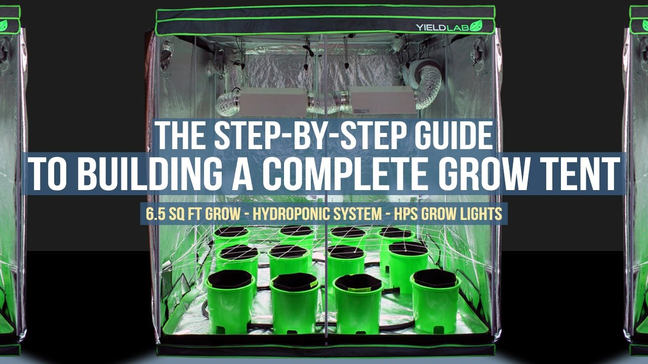 Step by Step Guide: Complete 6 5ft x 6 5ft Ebb and Flow Grow Tent Setup for  Hydroponic Gardening