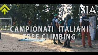 campionati italiani tree climbing itcc 2016  superalberi
