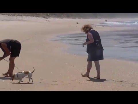Opoutere Beach 2016