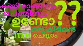 കണ്ണി മാങ്ങയും ചെമ്മീനും ഉണ്ടോഒരു കിടുക്കാച്ചി item ഉണ്ടാക്കാം || CHEMMEN CURRY ||