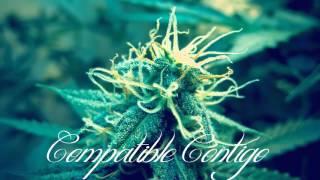 SANTA GRIFA-COMPATIBLE CONTIGO