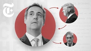 Why Michael Cohen Is a Key Witness | NYT News