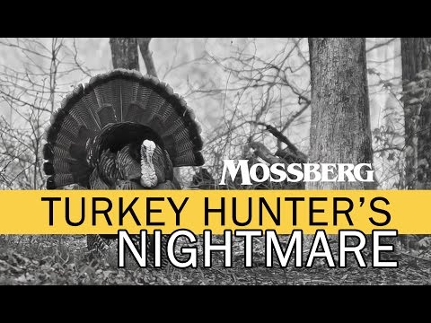 Turkey Hunting Nightmare: What Do You Do Next?