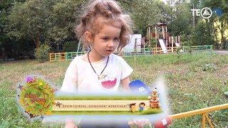 Детские ответы / Зачем нужны домашние животные / ТЕО-ТВ 2018