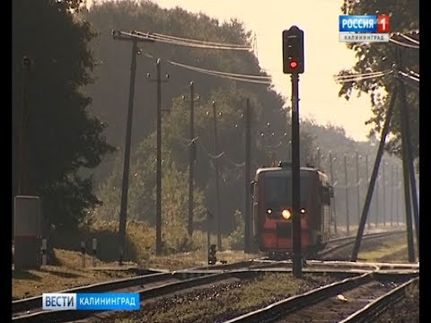 Из Московского района пустят 8 дополнительных рельсобусов