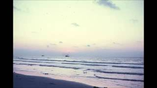 Shannon Hoon - From Shannon To You And You And You (Full Album) (Raw Acoustic)