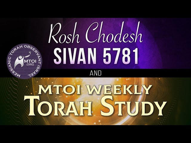 MTOI Weekly Torah Study   Bamidbar   Numbers 1–4:20