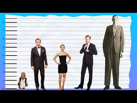 How Tall Is Leonardo Dicaprio Height Comparison