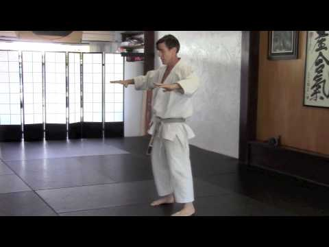 Karate Continuity of Movement 06