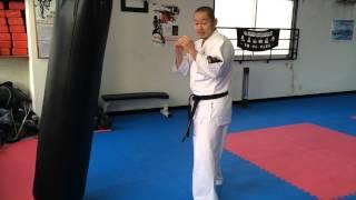 【新極真会】組手ビギナーテクニック サンドバッグ編   SHINKYOKUSHINKAI KARATE Training SANDBAG thumbnail