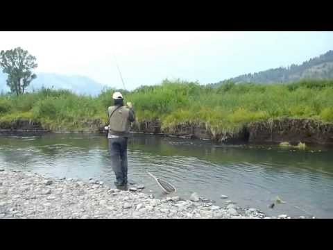 """Fly fishing in USA"" épisode 5 : le Parc National de Yellowstone"