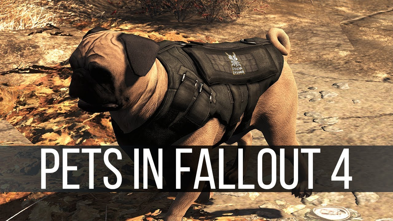 Fallout 4 Got Another Update