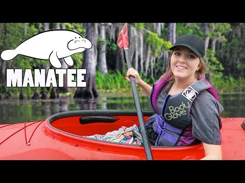 MANATEE UNDER MY KAYAK | Florida Adventures - Travel Vlogs