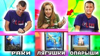 ВЫБЕРИ ПРАВИЛЬНЫЙ ЯЩИК и ВЫИГРАЙ 1000..