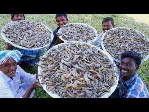 PRAWNS GRAVY Recipe | Villagers cooking Prawns Masala | Shrimp Curry | Healthy Village Food