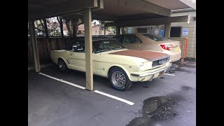 My New Project Car? - 1966 Ford Mustang
