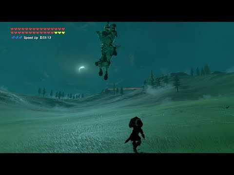 Zelda: BOTW (Dark Link VS Silver Lynel) All Dark Royal Guard Weapons