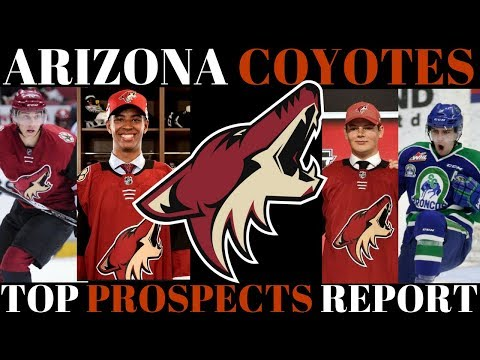 TOP NHL PROSPECTS 2018 - ARIZONA COYOTES