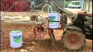 ディ・トラペックス油剤による菊の土壌消毒 thumbnail