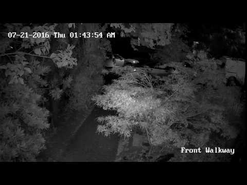 7-21-16 Whittier Heights Car Prowl