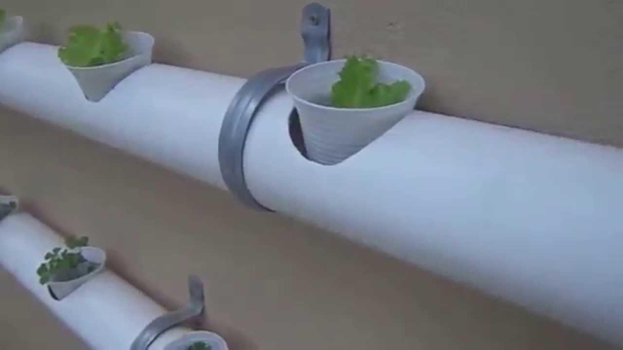 Video 1 hidroponia veja como f cil cultivar em casa for Sustrato para mesa de cultivo