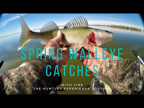 Eagle Lake Spring Walleye Catch And Tips