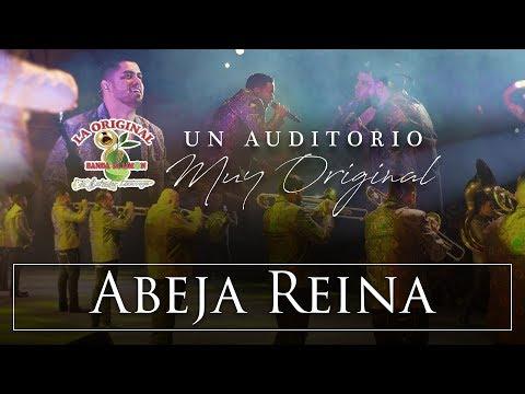 La Original Banda El Limón - Abeja Reina (Desde el auditorio)