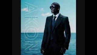 Against The Grain Akon Freedom Lyrics