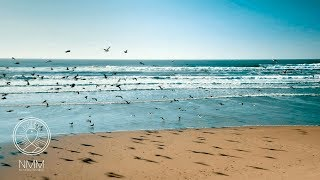 Meditation Music and ocean footage: relax mind body, peaceful music, inner healing