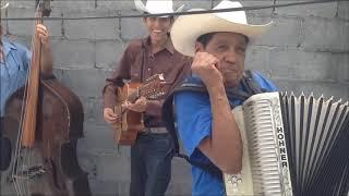 Los Gavilancitos de Nuevo León - Polka El Tololoche (Con Juan Torres)