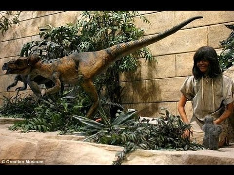 39 Humans Lived With Dinosaurs 39 Australian Owner Of