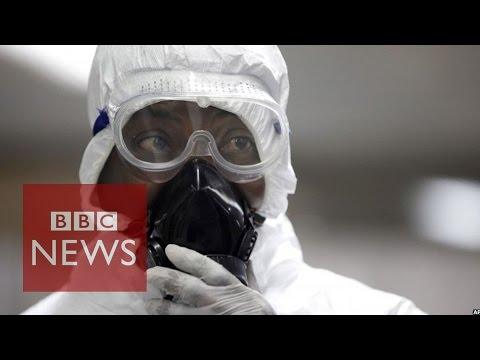 Is Ebola virus a global emergency? BBC News