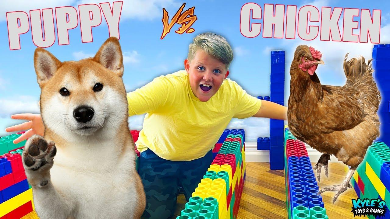 PUPPY VS CHICKEN Escape The Maze Extreme RACE!