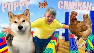 🐕 PUPPY VS 🐓 CHICKEN Escape The Maze Extreme RACE!
